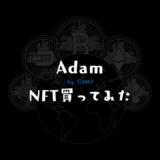 Adam byGMOでNFT買ってみた【特徴や購入方法も紹介】